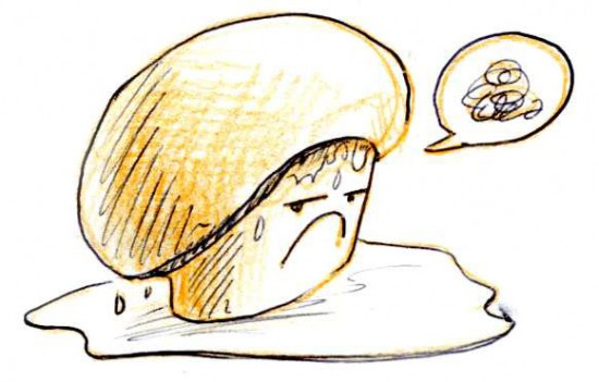 Wet mushroom