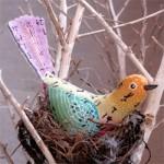 Abigail Glassenberg's birds