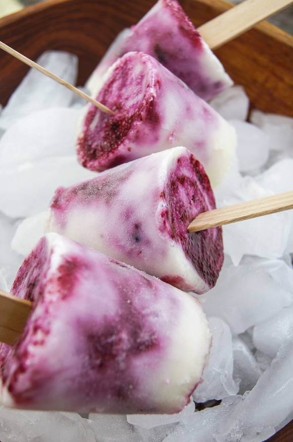Lemon-Blueberry-Paletas