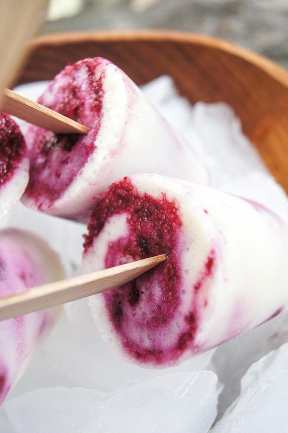 Lemon-Blueberry-Yogurt-Pops