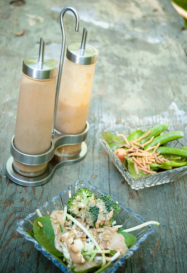 Tahini and coconut salad dressings